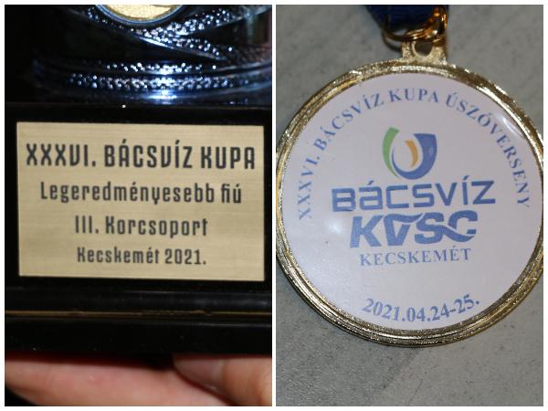 XXXVI Bácsvíz Kupa, XIX. Diapolo BVSC Kupa